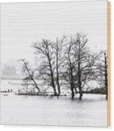 November Flood 1 Wood Print