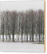 November Flood 2 Wood Print
