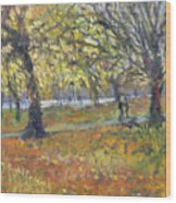 November In Hyde Park Wood Print