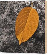 November Leaf Wood Print