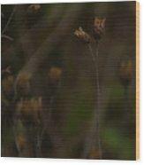 November Wood Print