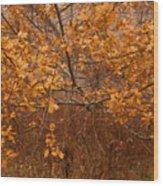 November Oak Wood Print