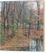 November Rainy Day In Waltham  Wood Print