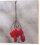 November Reds Wood Print