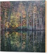 November Ripples Wood Print