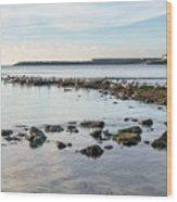 November Seascape 5 - Lyme Regis Wood Print