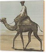 Noyes, Edward , Riding Camel Wood Print