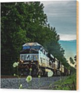 Ns 62w With Blurred Flowers Wood Print