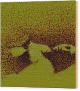 Nude 0940 Wood Print