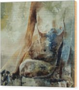 Nude 560408 Wood Print