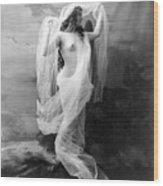 Nude, C1900 Wood Print
