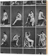Nude Posing, C1875 Wood Print
