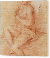 Nude Seated Woman Playing A Lute Wood Print
