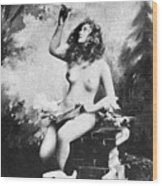 Nude With Birds, 1897 Wood Print