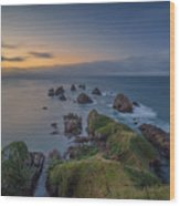 Nugget Point Wood Print