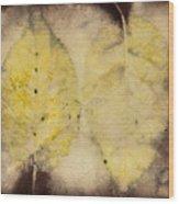 Number 55 Wood Print