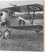 Nungesser's Nieuport 17 Wood Print