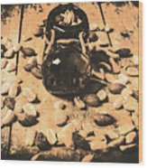 Nuts About Vintage Still Life Art Wood Print