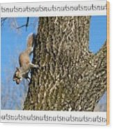 Nutsnutsnuts Wood Print