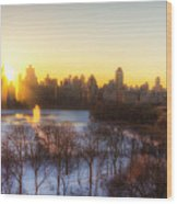 Ny Winter Panaroma Wood Print