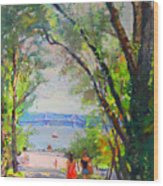 Nyack Park A Beautiful Day For A Walk Wood Print by Ylli Haruni