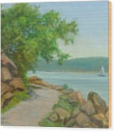 Nyack Trail Along The Hudson Wood Print