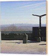 Nyc 911 Park Wood Print