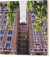 Nyc Building With Tree Overhang Wood Print
