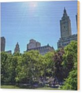 Nyc From Central Park Wood Print