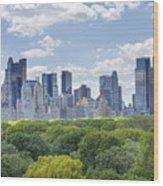 Nyc Skyline Day Wood Print by Ariane Moshayedi