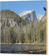 Nymph Lake In Rocky Mountain National Park Wood Print