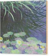 Nympheas Avec Reflets De Hautes Herbes Wood Print