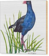 Nz Native Pukeko Bird Wood Print