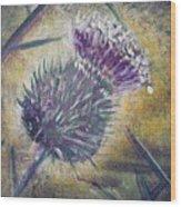 O' Flower Of Scotland Wood Print