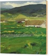 O Malley Home Achill Island County Mayo Ireland 1913 Wood Print