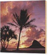 Oahu, Mokolii Island Wood Print