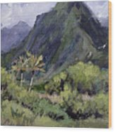 Oahu Valley Wood Print by L Diane Johnson