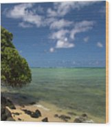 Oahu's East Coast 5 Wood Print