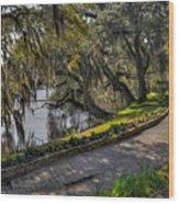 Oak And River Path Wood Print