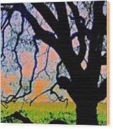Oak At Elkhorn Wood Print