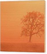 Oak At Sunrise Wood Print