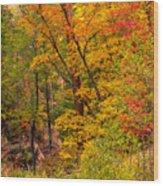 Oak Creek 1 Wood Print