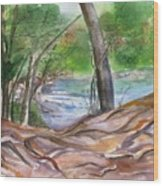 Oak Creek In Sedona Wood Print