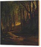 Oak Grove At San Terenzo Wood Print