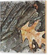 Oak Leaf On The Rocks Wood Print