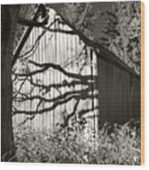 Oak Shadows On A Barn Wood Print