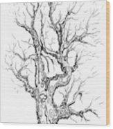Oak Tree Abstract Study Wood Print