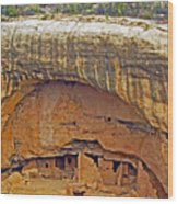 Oak Tree House - Mesa Verde Wood Print