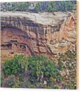 Oak Tree House - Mesa Verde National Park Wood Print