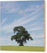 Oak Tree Landscape Wood Print
